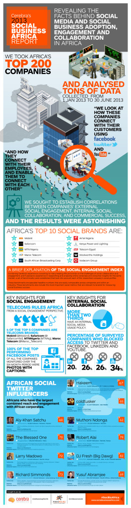 Cerebra Social Business Africa 2013 Report powered by Fuseware